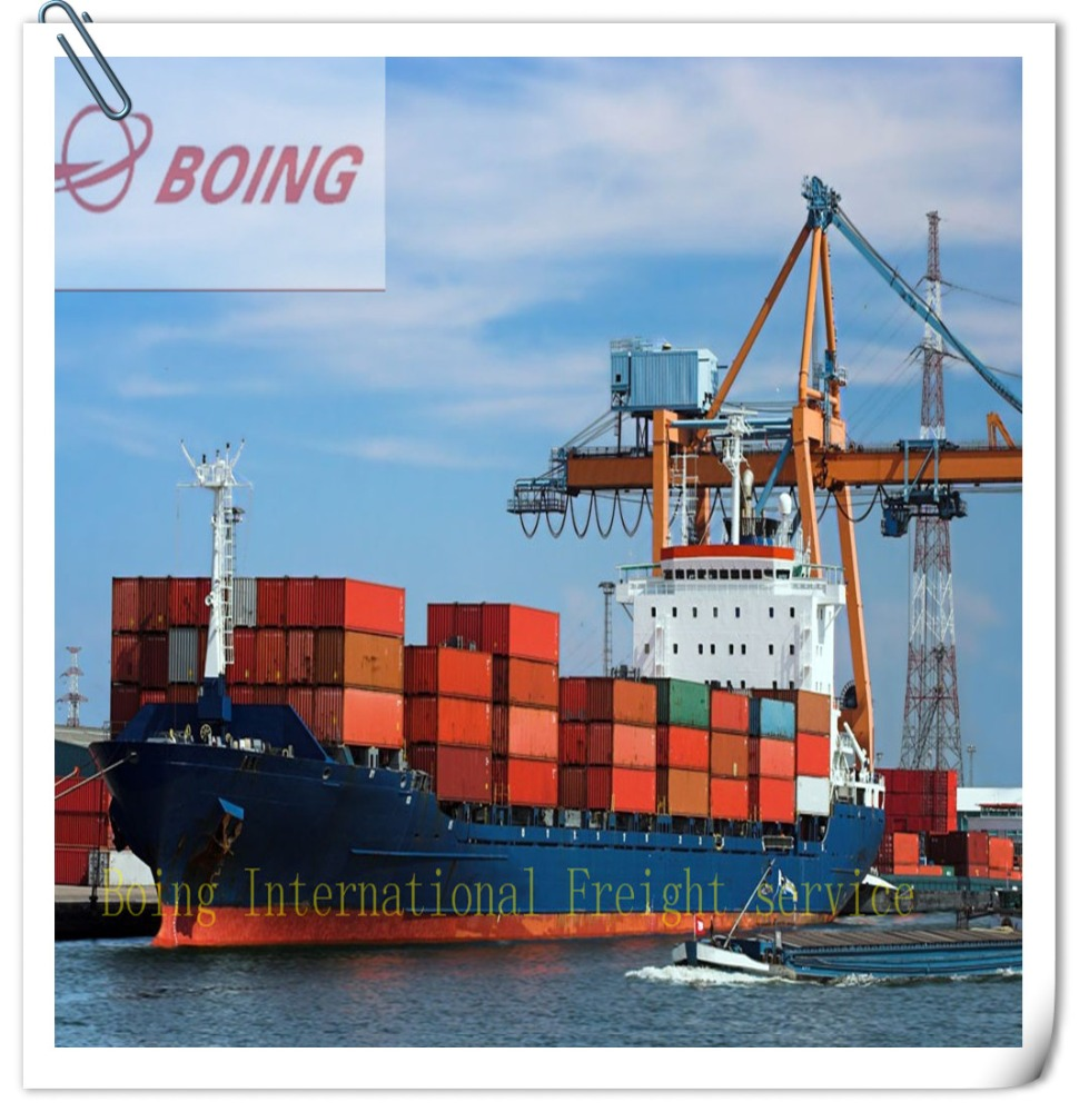 Best Sea freight forwarder shipping rate China to worldwide/container shipping to Celje ---Bree(skype:boingbree)