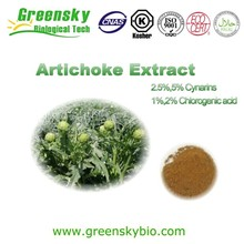 Chinese herbal medicine extract artichoke