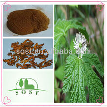 natural herbal extract chinese goldthread