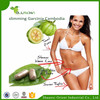 Best Price Loss Weight Garcinia Cambogia extract 60%