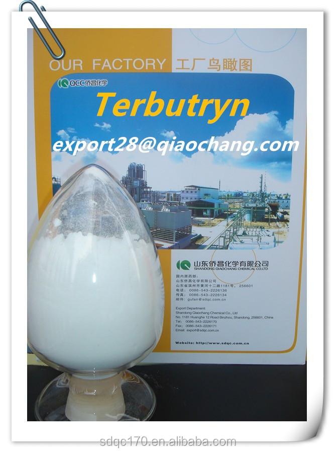 Agrochemical Terbutryn Herbicide 97%TC 80%WP 500g/lSC CAS: 886-50-0