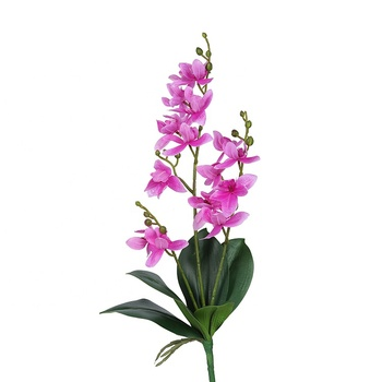 Dendrobium Real Touch Artificial Plantsthailand Flowers Orchid Withleaves For Hotel Decoration Buy Artificial Purple Orchids Thailand Orchid Flower Real Touch Orchid With Leaves Product On Alibaba Com