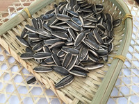 Chinese long type new crop sunflower for made oil