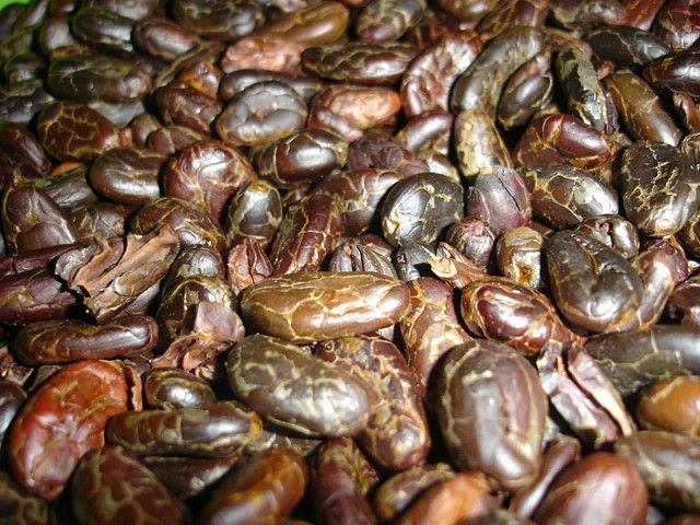 SUPER QUALITY ROASTED COCOA BEANS