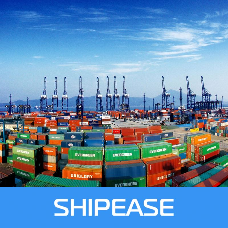 Freight forwarder sea freight shipping to Chennai,India from china,shenzhen/ningbo/shanghai