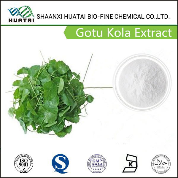 Water Soluble Gotu Kola P.E 10% HPLC Total triterpenes (As Asiaticoside & Madecassoside)