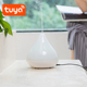 Tuya smart electric air freshener diffuser decorative humidifier mist maker
