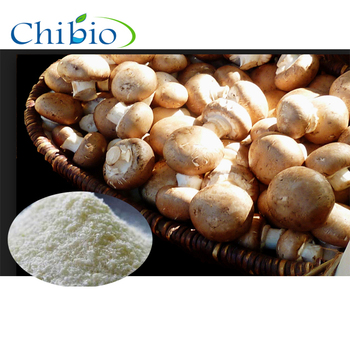 600cps Plant Source Water Soluble Powder Mushroom Chitosan for Food