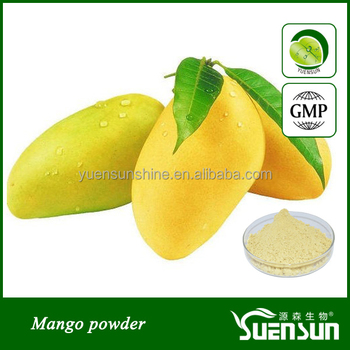 High quality mango concentrate juice powder
