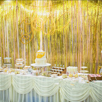 Birthday Party Wedding Backdrop Photography Fringe Tinsel Foil Curtain