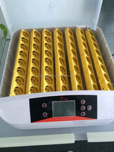 48 chicken eggs/132 quail eggs High Quality automatic chicken egg incubator price for sale