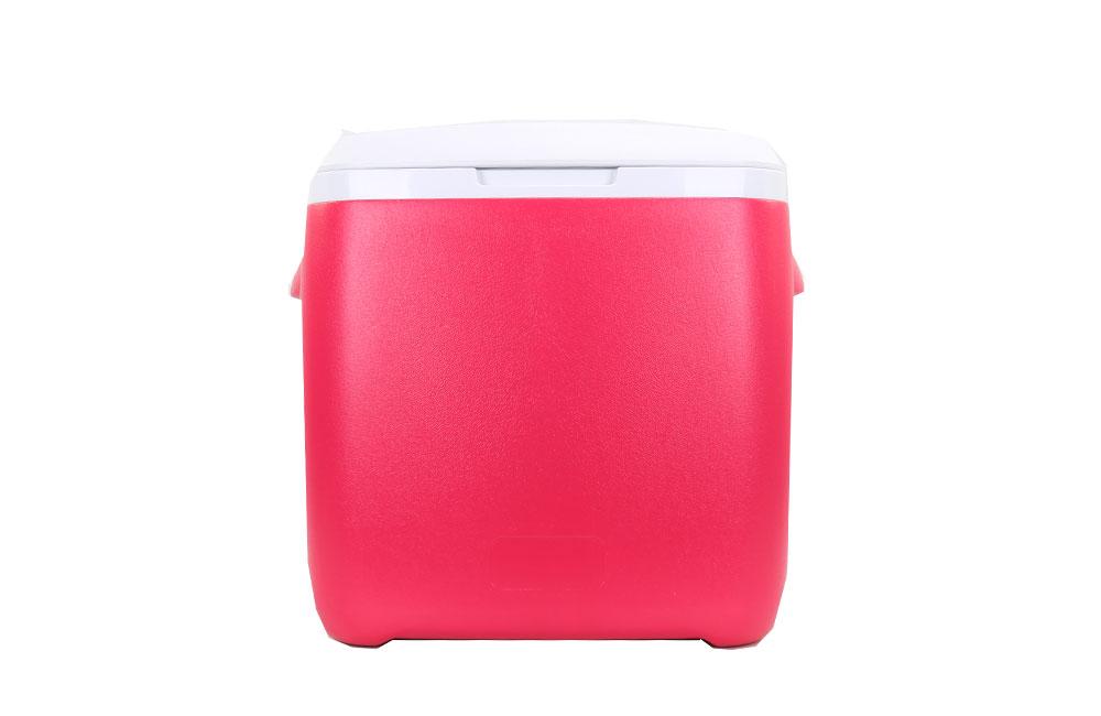 28l venda quente de plástico caixa de refrigerador de peixe coolers para piquenique ao ar livre