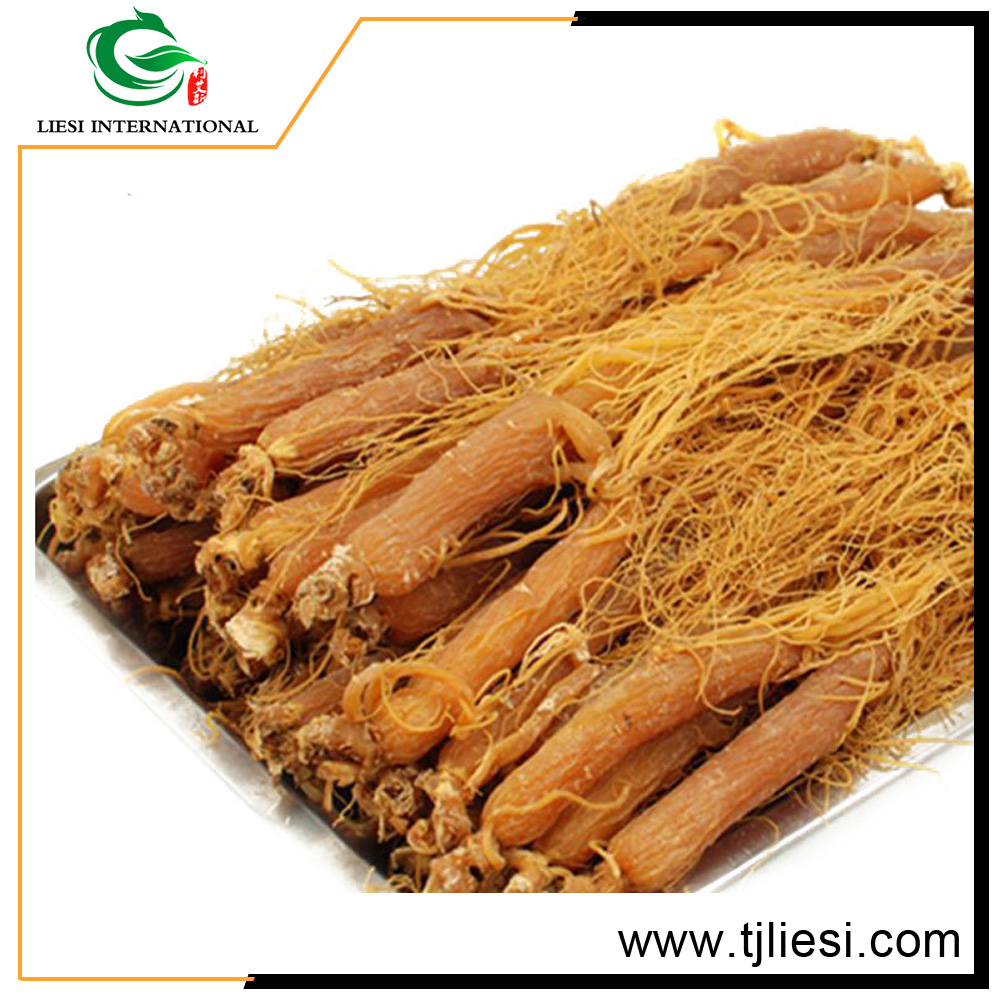 china wholesale custom pure red ginseng 2016