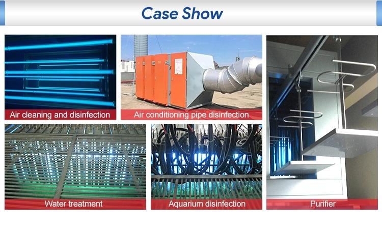 case show.jpg