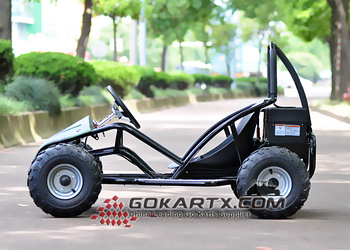 800w Mini Buggy Electric Go Kart