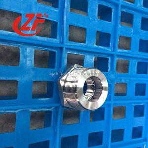 stainless steeL F304L threaded pipe extension fitting