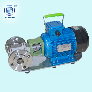 WCB small type edible oil gear pump stainless steel food grade lubricating medium gear pump