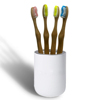 /product-detail/eco-friendly-100-biodegradable-bamboo-toothbrush-fsc-manufacturer-60816320885.html