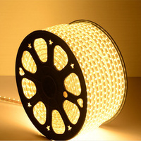 Best selling products high quality outdoor engineering 110V/220V magic SMD rope 2835/5050 waterproof flexible led strip