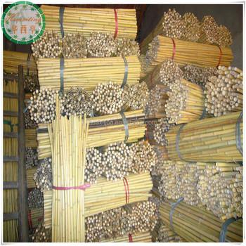Bamboo Poles Canes Stakes Sticks Tonkin