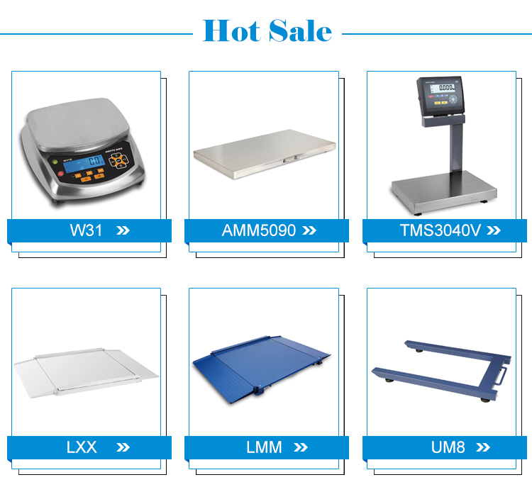 600kg/300kg/150kg/60kg/30kg Electronic Weighing Digital Platform Scale with Pole