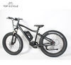 8fun1000w HD mid drive motor fat tire electric bike 2017 2018