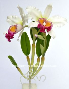"Cattleya Orchid ""m"" Artificial Flowers Thai Clay Handmade"