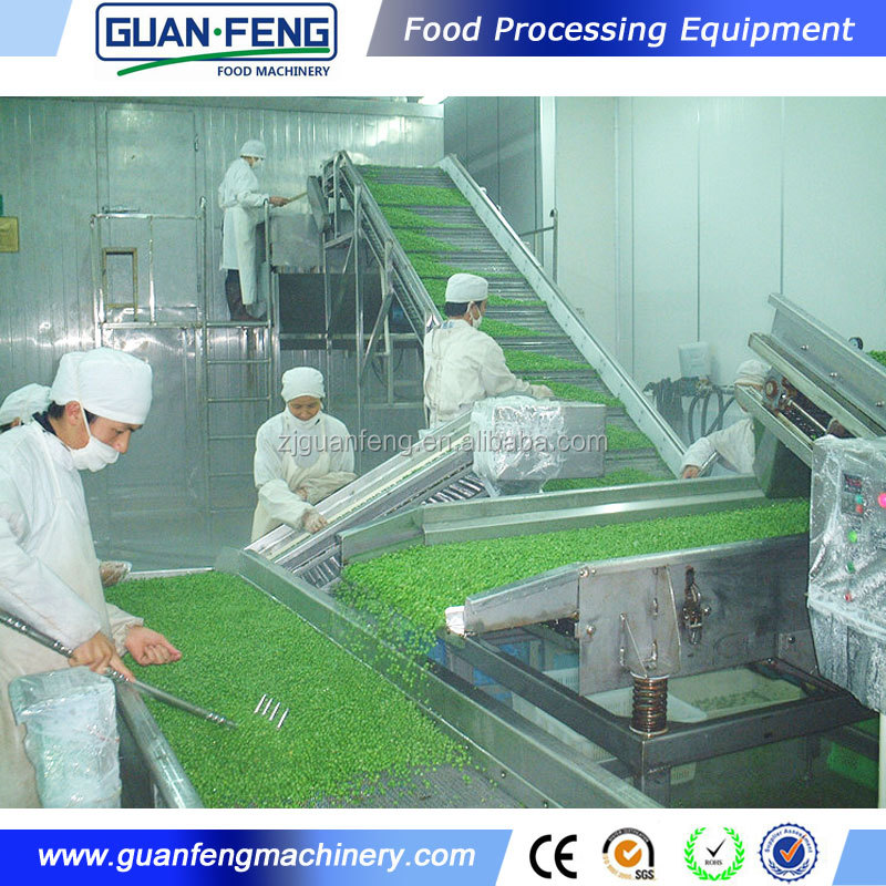 High Quality Food Machinery IQF Fluidized Bed Freezer