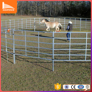 stable galvanized pipe horse fence panels with metal material 50*50*1.6mm post