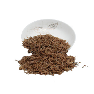 wholesale dried red worms/bloodworms