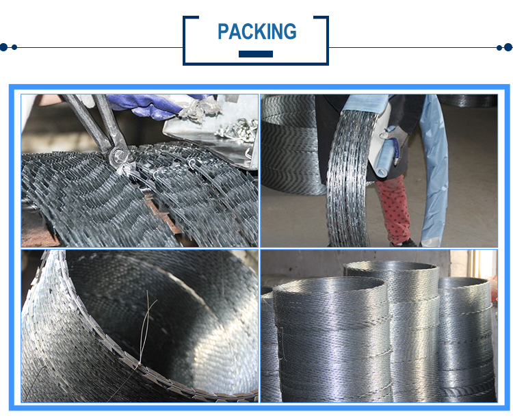 Hot sale cheap pvc coated galvanized stainless steel razor wire