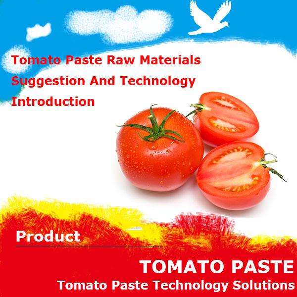 Small scale tomato processing plant inform you the tomato paste technology processing and Formula