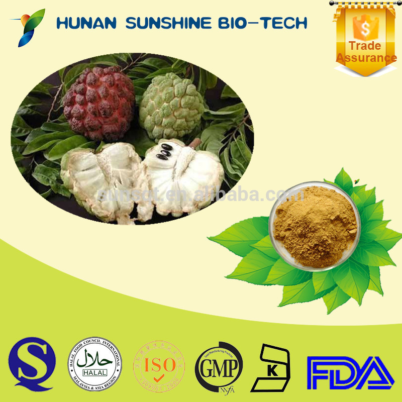 soursop extract powder/soursop juice powder/graviola soursop p.e.as an alternative cancer treatment