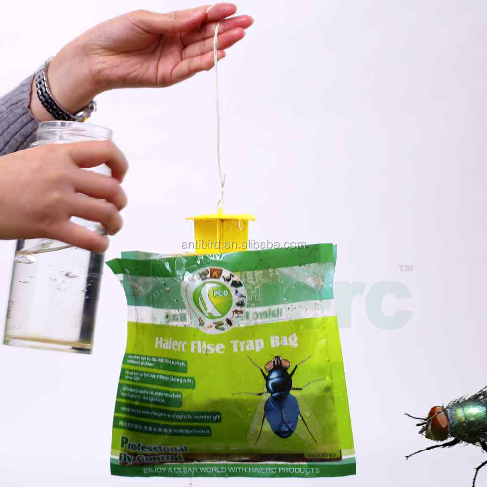 TOP-5 Best Fruit Fly Traps Worth Buying in 2020 for vegetable field melon fruit fruit needle bee