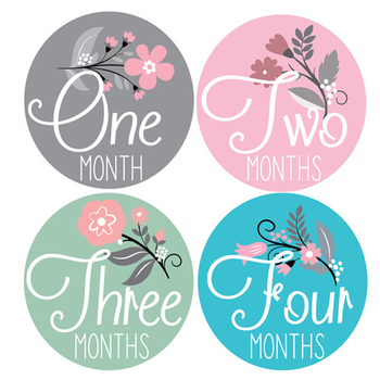 baby girl monthly stickers stickers for girls baby month stickers
