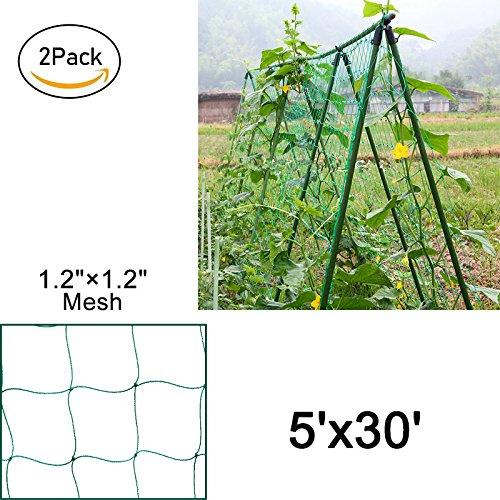 """Mr Garden Heavy-duty PE Plant Trellis Netting Green Garden Netting 1.18""""-6 W5'xL30',2pack"""