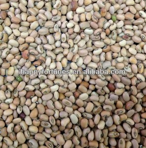 cow peas crop 2014 new crop pink cow peas machine cleaned