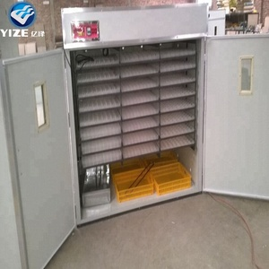 used 1056 Eggs incubator broiler chicken hatching eggs for sale