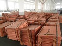 Cathode Copper with High Quality 99.99%Min