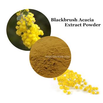 Factory Supply Natural Blackbrush Acacia Extract Powder Buy
