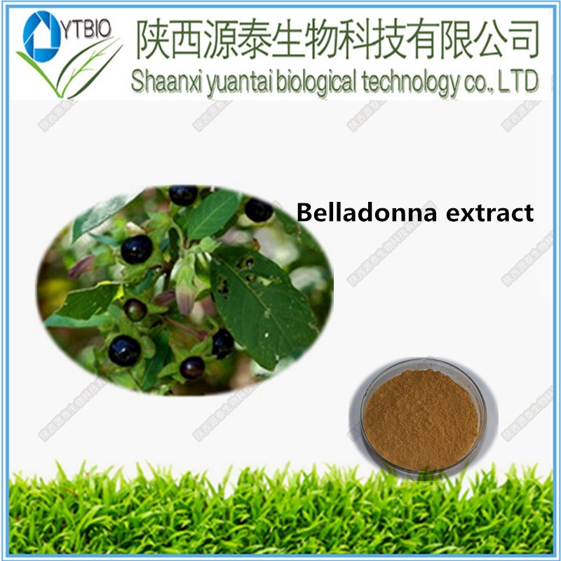 Nicotinamide riboside and pregabalin powder Natural Belladonna Leaf Extract powder