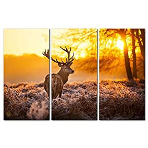 Fall Decorations Canvas Print Wall Art Painting For Home Decor Deer In Autumn Forest In Sunset Animal Wildlife 3 Piece Panel Paintings Modern Giclee Stretched And Framed Artwork The Picture For Living Room Decoration Animal Pictures Photo Prints On Canvas