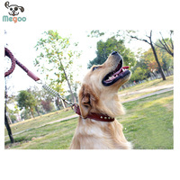 New design pet leashes and collars fog large dog made in China