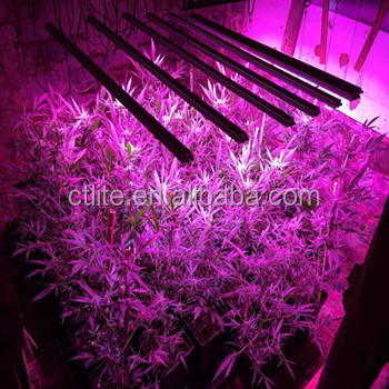 wholesale best price led grow light bar waterproof good heat dissipation led grow light for grow cabinet