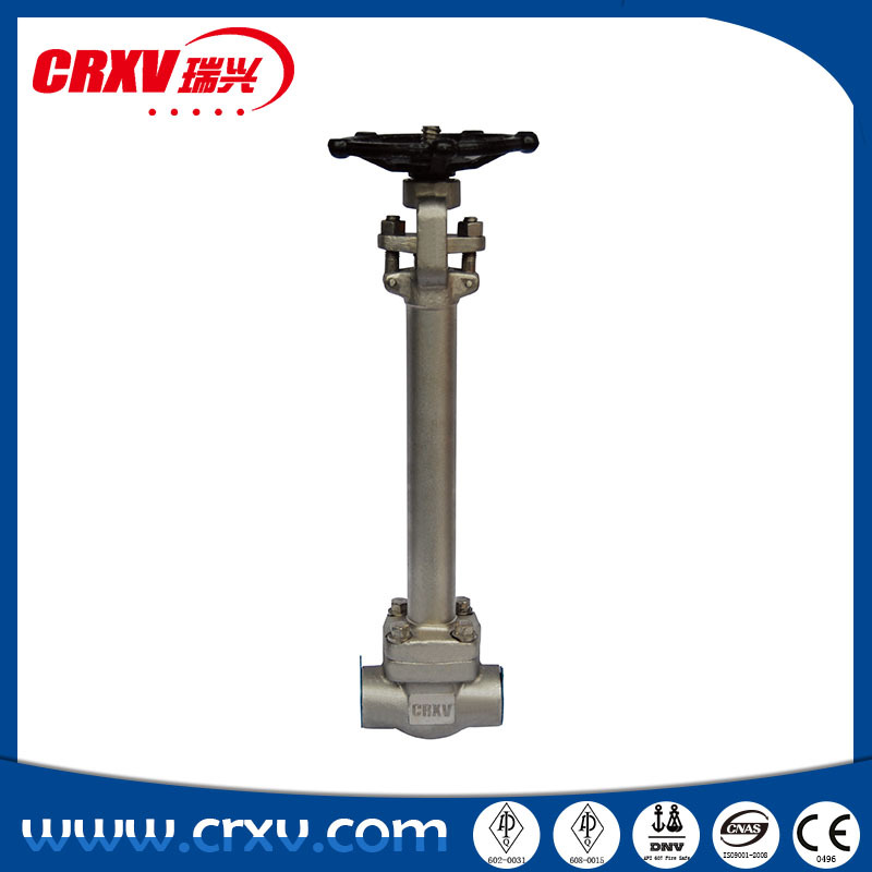 API602 CRYOGENIC EXTENDED STEM 250MM GATE VALVE