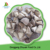 High Quality Slicing Frozen Champignon Mushroom On Sale