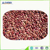 Chinese Yi'an red speckled kidney bean