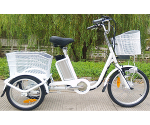 China factory 3 wheel electrical tricycle electric trike tricycles