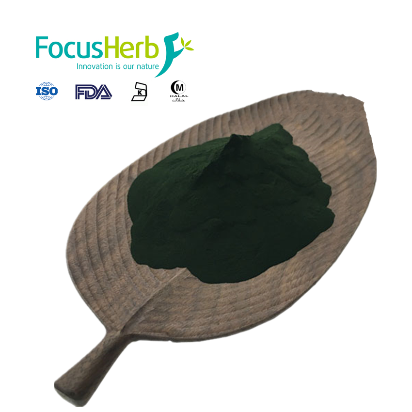Wholesale High Quality Organic Chlorella Powder For Bodybuilding Supplements