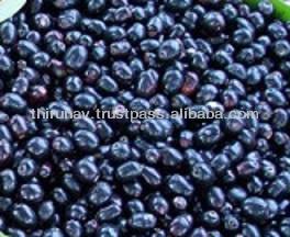 diabetes de polvo de semilla de jamun en niños